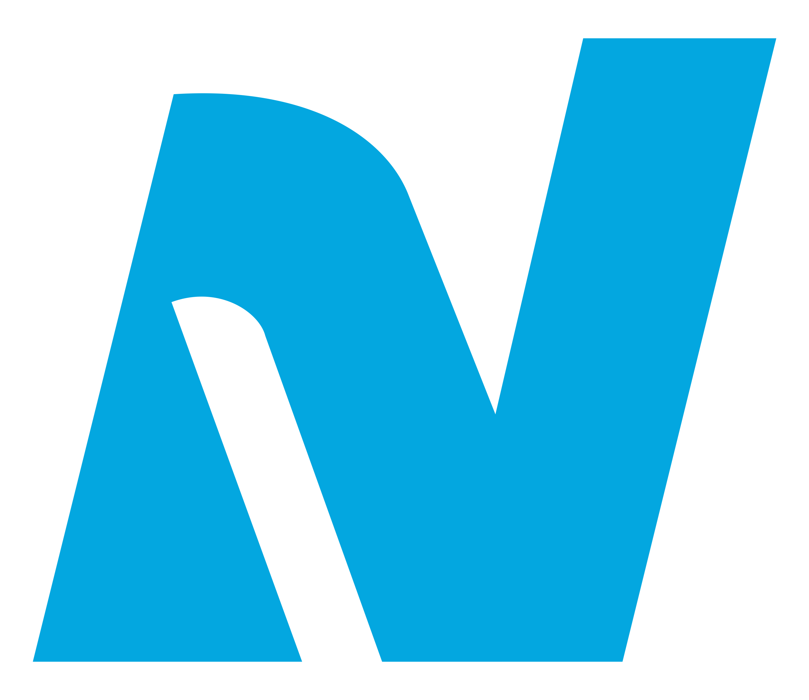 logo-nl-pantone-2995c.png